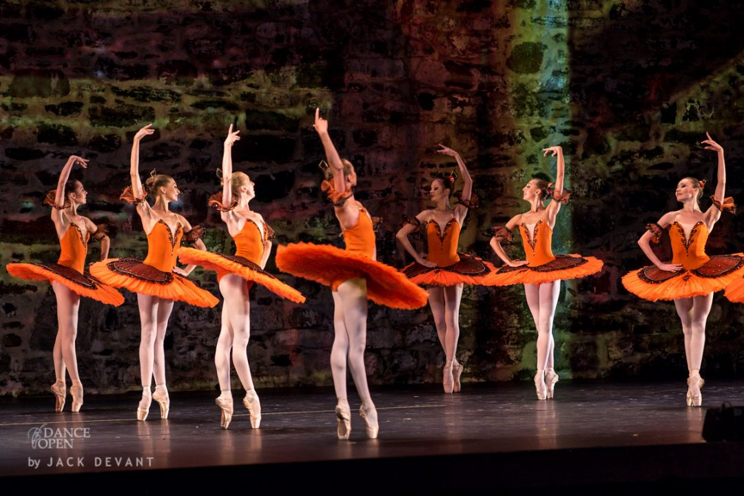 Yakobson Ballet Theatre corps in Don Quixote