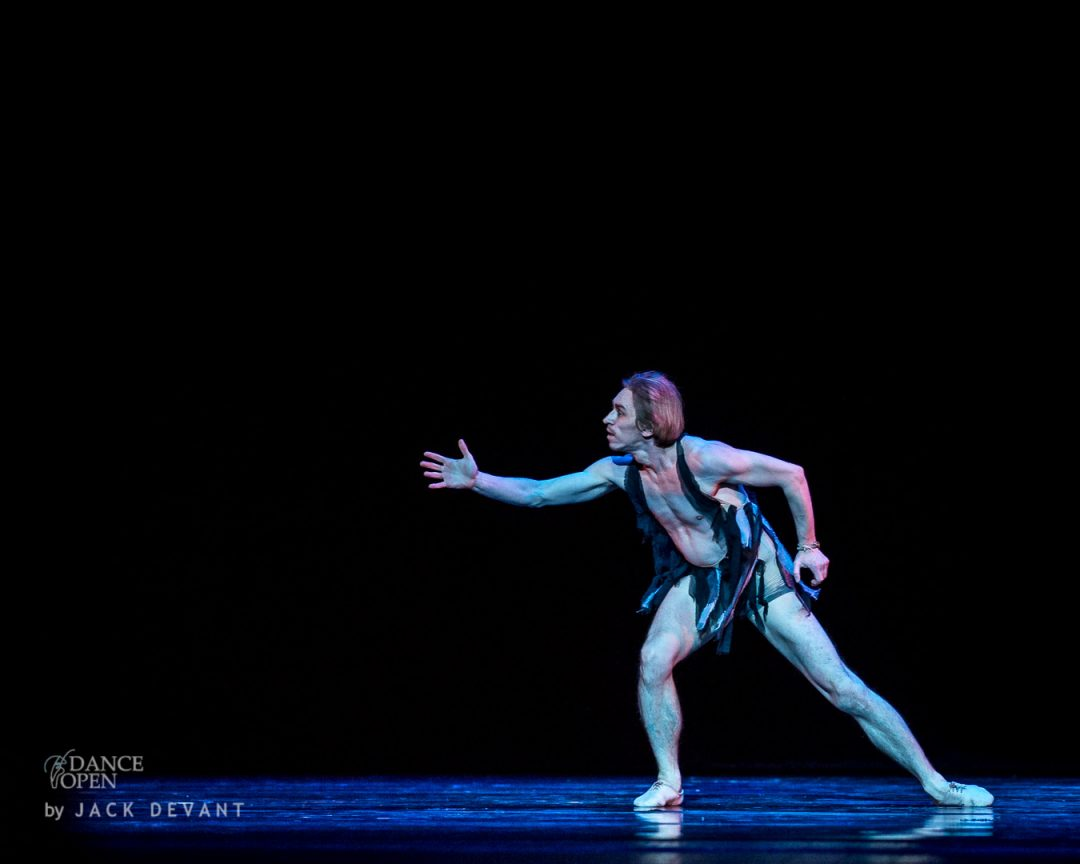 Swan by Igor Kolb, music by Camille Saint-Saëns, choreography by Eugeny Poklitar