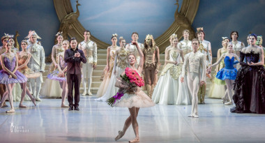 the sleeping beauty mikhailovsky