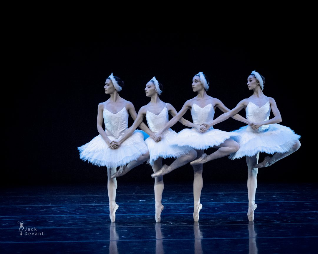 The Dance Of The Cygnets by Giorgia Calenda, Flavia Morgante, Susanna Salvi and Flavia Stocchi
