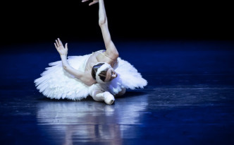 Svetlana Zakharova The Dying Swan