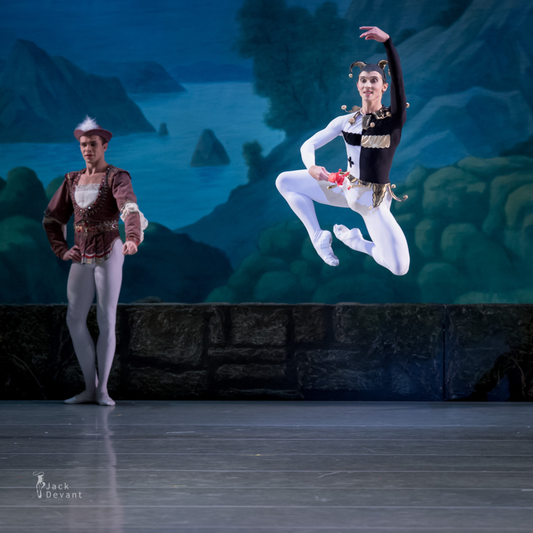 Yaroslav Baibordin (Rus Ярослав Байбордин) as The Jester