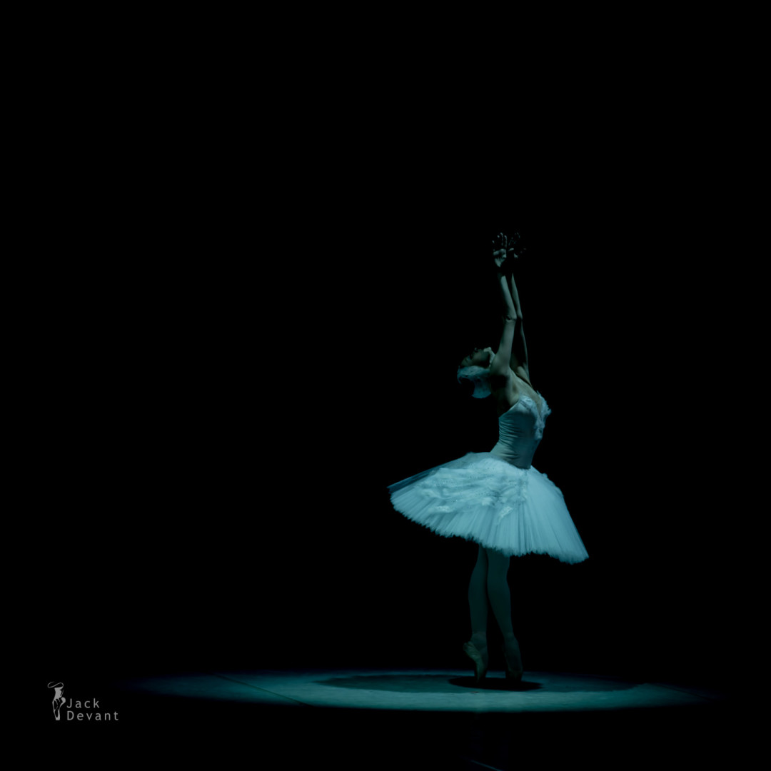 Olga Smirnova as the Dying Swan