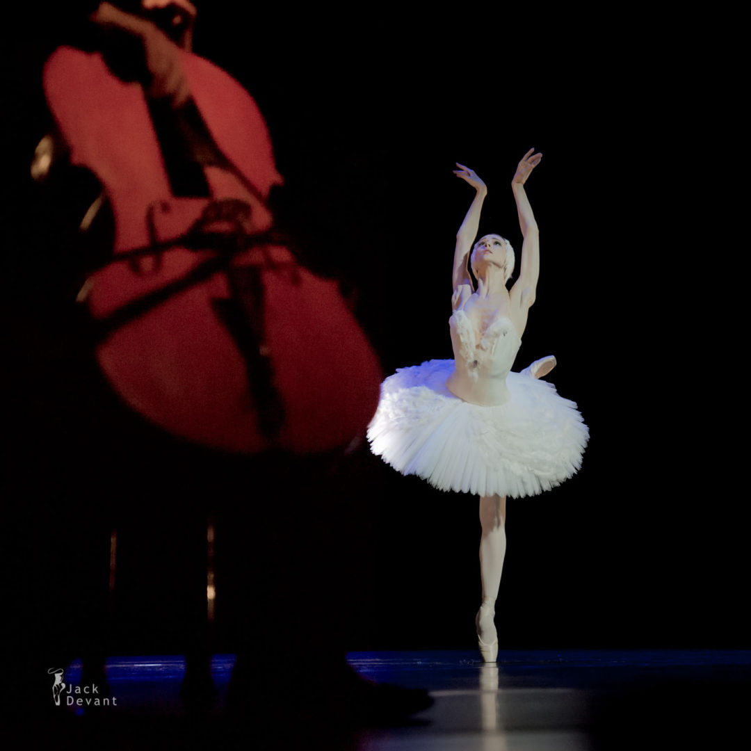 Svetlana Zakharova cello dying swan bbc proms