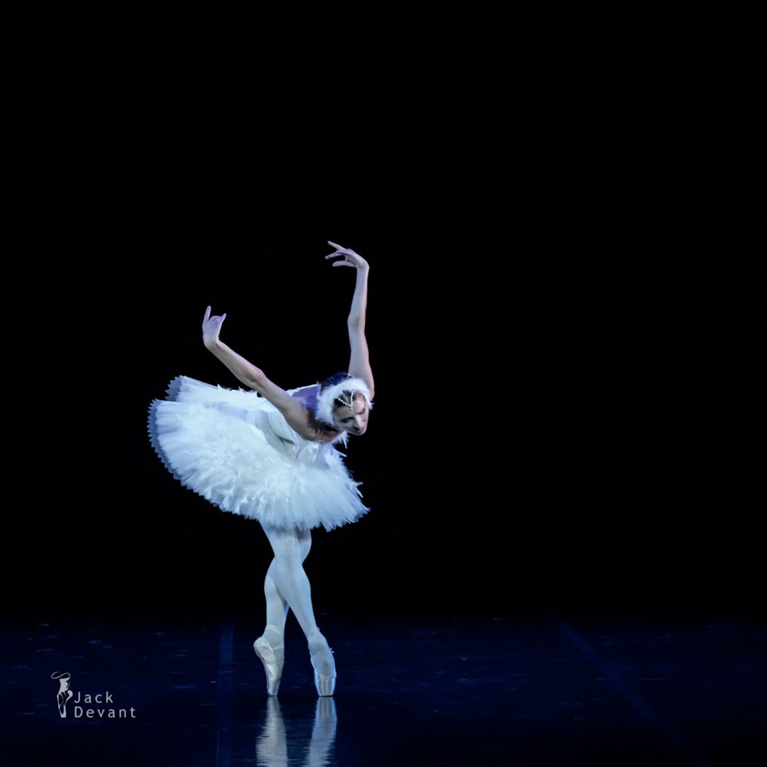 Olga Malinovskaya, Dying Swan, Camille Saint-Saens, Michael Fokine, Summernights International Ballet Gala, Estonian National Opera