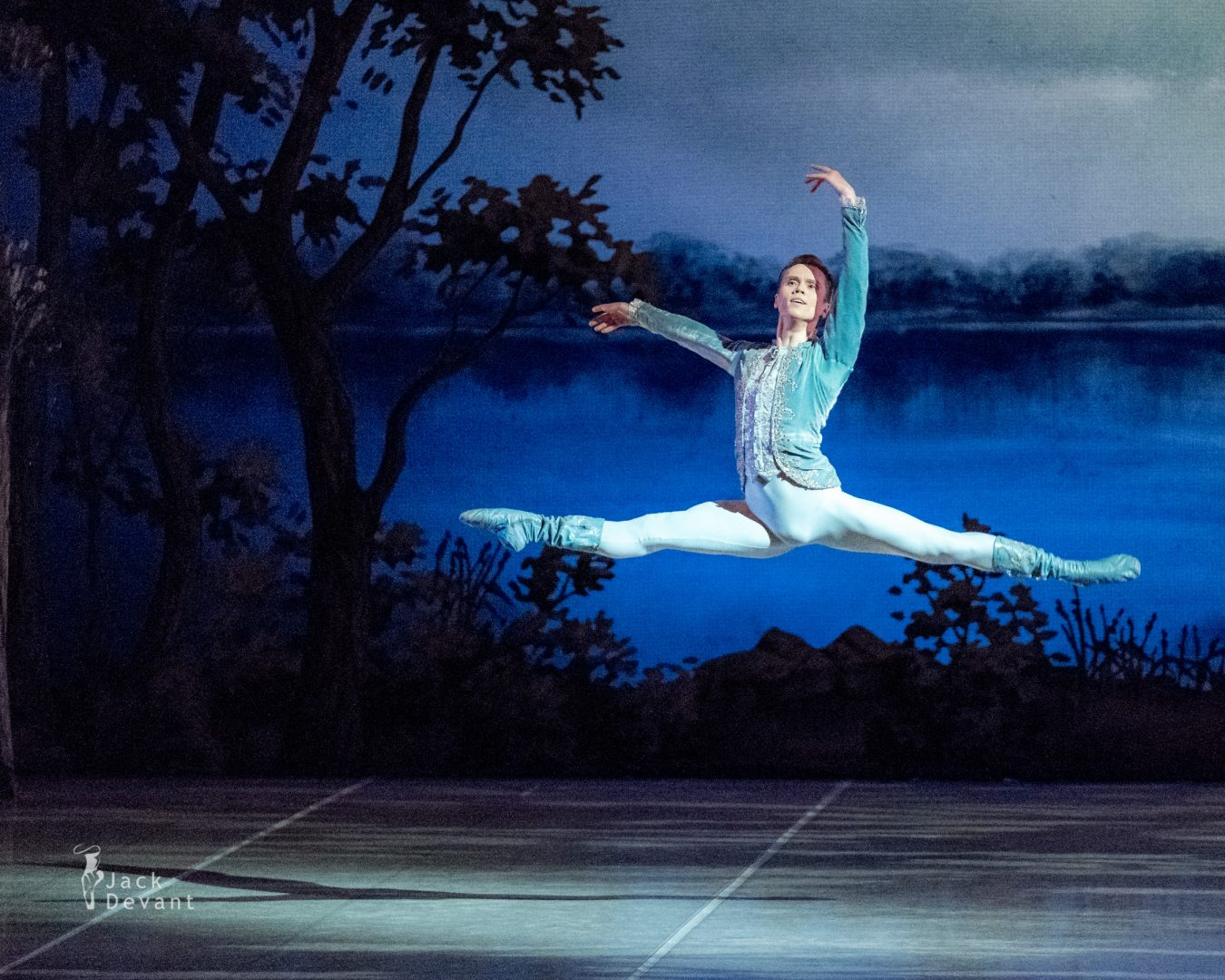 The Sleeping Beauty Prince Desire — Leonid Sarafanov (Леонид Сарафанов) 5