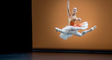Krasina Pavlova in Don Quixote PDD