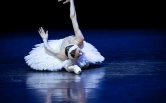 Svetlana Zakharova The Dying Swan