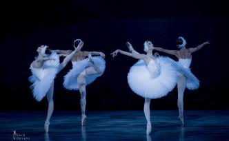 Four Swans: Viktoria Brilyova, Diana Smirnova, Yekaterina Chebykina, Zlata Yalinich