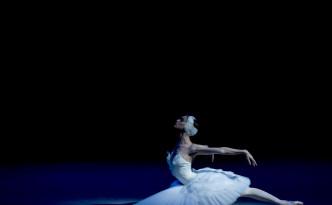 Olga Smirnova Swan